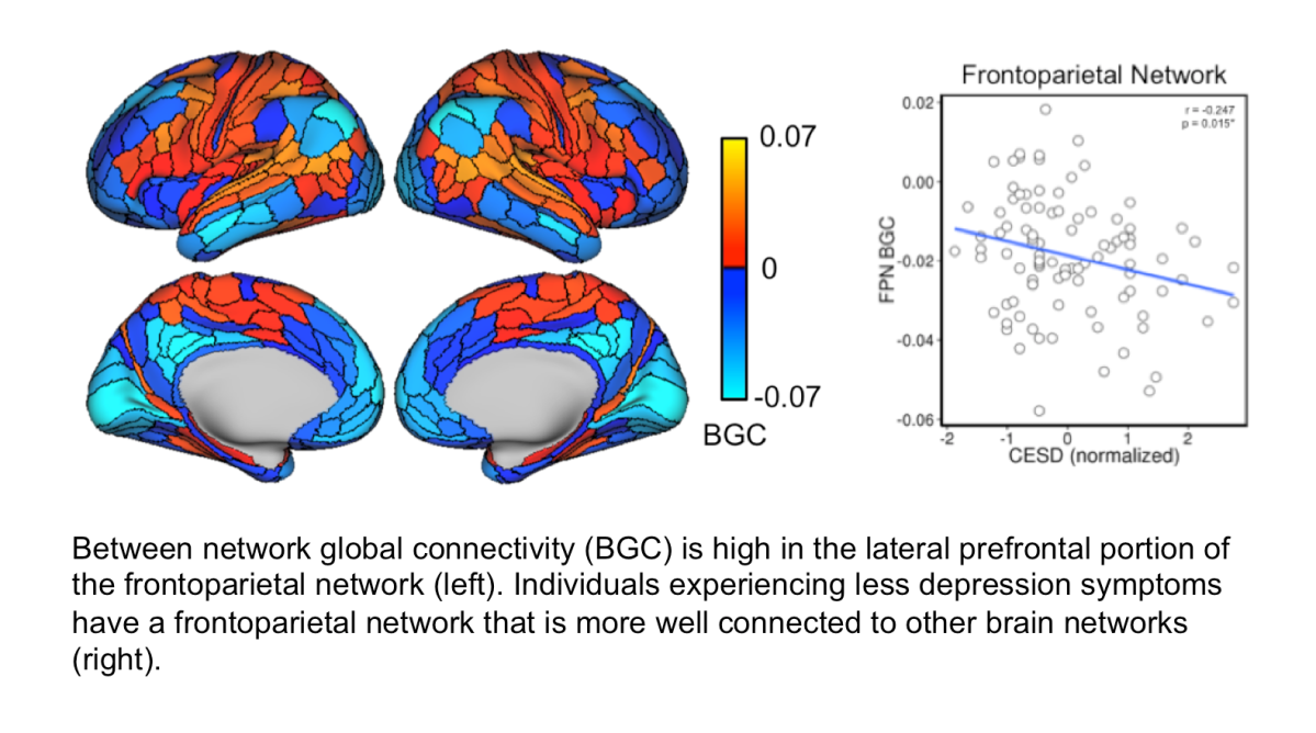 Less depression for those with a better-connected frontoparietal brain network